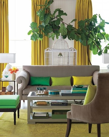 Green & Yellow / Color-Blocking